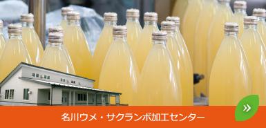 名川ウメ・サクランボ加工センター