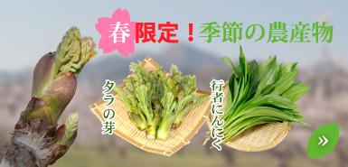 季節の農産物